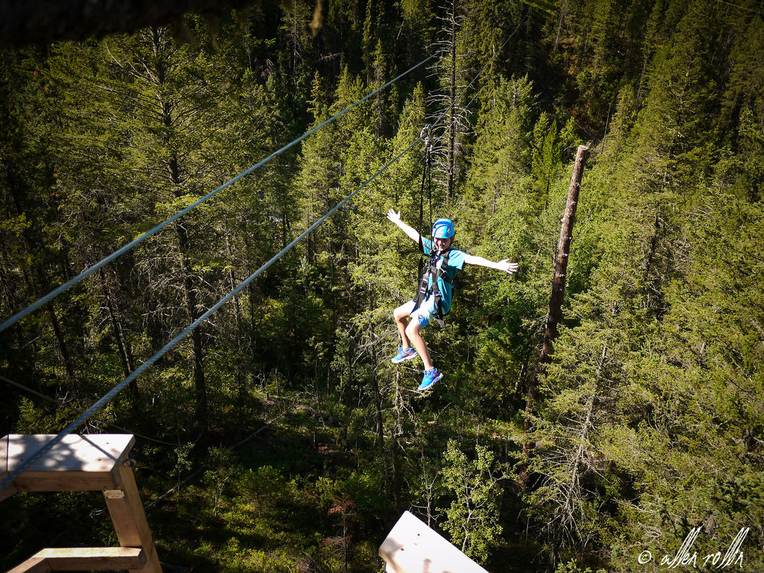 Fly above the tree canopy when you visit our family-fun zipline.