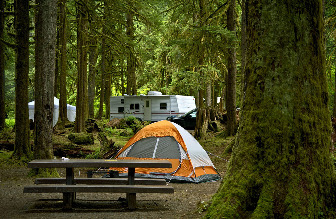 There are plenty of camping opportunities around Fairmont Hot Springs, BC.