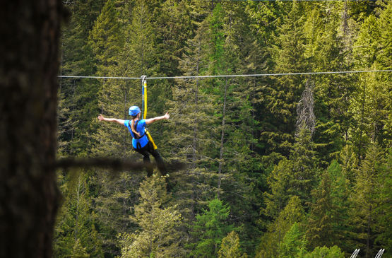 Why You Need to Zipline in Fairmont Hot Springs